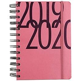 Exacompta 184578E – Agenda 1 giorno per pagina, 12 x 17 cm, agosto 2019 a luglio 2020, colore: Rosa