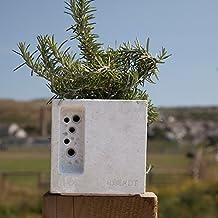 Mini beepot Flower Pot nido Hotel abejas Colmena Casa