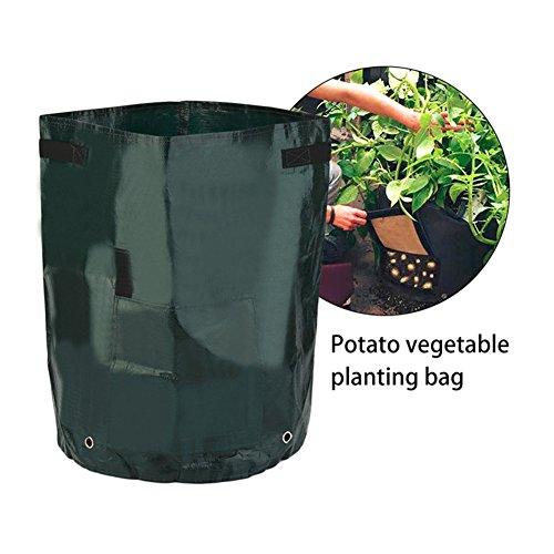 FANGff de Pommes de Terre cultiver Sacs Premium Matériau Respirant avec Sangle Poignées pour Pommes de Terre, Carottes, Oignons et Encore Plus de Jardin Plantation Sacs (2pcs), 2 Pièces