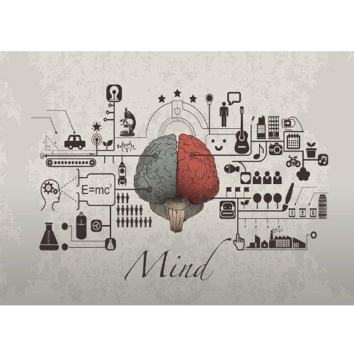 Poster / Tela Canvas -Arte Astratta - Funzioni del cervello DESIGN La mente - The MIND - Medicina- 50x70cm - Tela Canvas - (cod.010)
