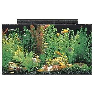 SeaClear 50 gal Acrylic Aquarium Combo Set, 36 by 15 by 20″, Black