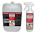 5,5 Liter Katzenurin Geruchentferner Geruchsentferner Geruchvernichter Katzen-Urin-Geruch Uringeruch Tierurin Anti Ex Katzenklo Katzen Uringeruch Hundeurin Urinduft Hunde unschädlich für Mensch und Tiere, von CleanPrince Geruchskiller Geruchsentferner Geruchsabsorber Geruchsbeseitigung Gerüche Geruchsneutralisator Geruchsneutralisation, Gerüche werden neutralisiert, nicht überdeckt, stoppt lästige Gerüche mit Sofortwirkung, ohne Rückstände