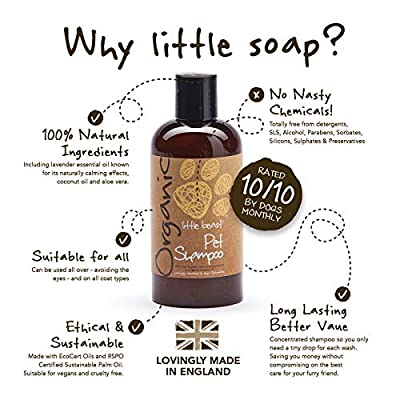 Dog Shampoo Organic Pet Grooming – Natural Liquid Wash – 250ml from Little Soap Company