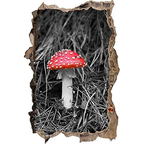 fungo tossico in foresta nera / svolta parete bianca in