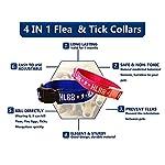 Pengmma Pet Kill Flea Eggs Mosquitoes Tick Collar (Large Dog) 7