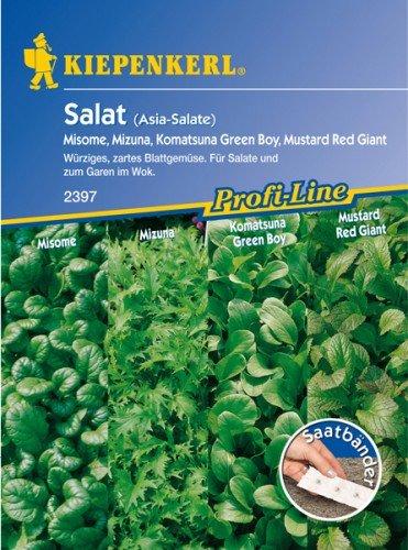 Asia-Salate, Saatband