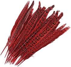 833cd3e8255cfe Surepromise 20 STK Fasanenfedern 25-30cm Fasan Feder Rot Echte Vogelfeder  Schmuckfedern Hutfeder Hutschmuck