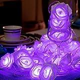 1 String 40 LED Rose Lichterketten Batteriebetriebene Romantische Blume Rose Fairy String Licht Lampe 19.68 ft für Hochzeitszimmer Jubiläum Valentinstag Dekoration (Lila Licht)