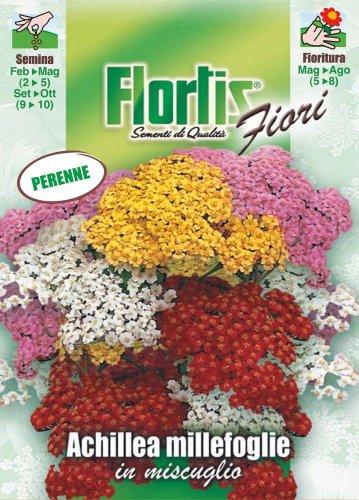 Flortis 4351001 Gemeine Schafgarbe (Schafgarbensamen)
