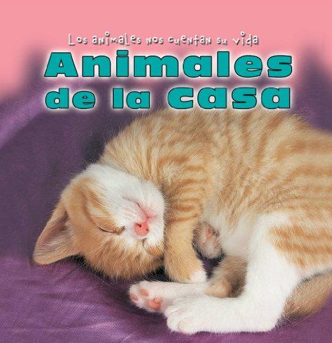 Animales De La Casa/Animals Around the House (Los Animales Nos Cuentan Su Vida/Animal Show and Tell)