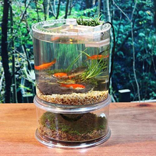 Yshen Aquariummini Acryl Aquarium Turtle Bowl Terrarium Käfig Haus Home Desktop Dekoration Transparent -