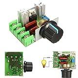 Tensione 2000W 220V AC SCR elettrico Regolatore del motore di controllo del regolatore di velocità