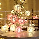 Shirylzee Guirlande Lumineuse Rose 3M 20 LED À Piles Fleur Rose Blanc Chaud Rose Fées Lumières Romantique Maison Jardin Décoration pour Mariage Fête la Saint Valentin Noël (Blanc-Rose)