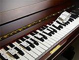MUKEZON Piano Stickers zum Klavier oder Keyboard lernen, allgemeine Einrichtung, kein Kleber, keine Notwendigkeit zu schneiden, einfach zu tragen, wiederverwendbar, verbesserte Version und gute Qualität ...