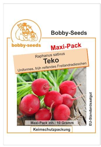 Bobby-Seeds Radieschensamen Teko Maxipack