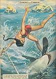 Sciatrice nautica va a sbattere in piena corsa contro un piccolo pescecane, mozzandogli la testa. - Copertina illustrata - amazon.it