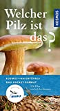 Welcher Pilz ist das?: 170 Pilze einfach bestimmen (Kosmos-Naturführer Basics) - Markus Flück