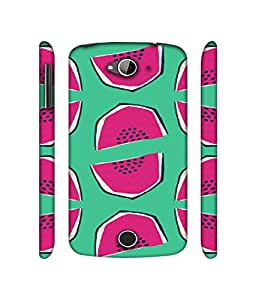 NattyCase Watermelon Design 3D Printed Hard Back Case Cover for Acer Liquid Z530
