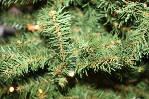 Idena 8582019 – Weihnachtsbaum im Topf mit 35 warm weißen LED, ca. 55 cm - 2