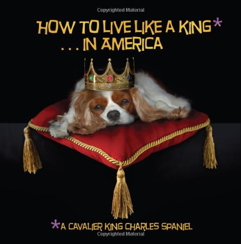 How to Live Like a King.in America