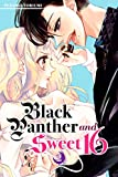 Black Panther and Sweet 16 Vol. 2