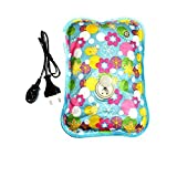 #3: electric hot water bag