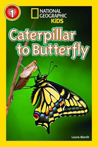 National Geographic Kids Readers: Caterpillar to Butterfly (National Geographic Kids Readers: Level 1)