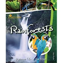 Rain Forests: Discover Life in the Trees