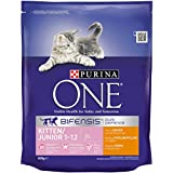 Purina One Kitten Food/Junior 1 to 12 Months Rich in Chicken and with Whole Grains, 800 g - Pack of 4