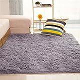 ALCYONEUS, tappeto morbido, rettangolare, antiscivolo. Adatto per il pavimento di camera da letto o soggiorno, Silver Gray, 80*120cm
