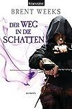 Der Weg in die Schatten: Roman (Schatten-Trilogie 1)