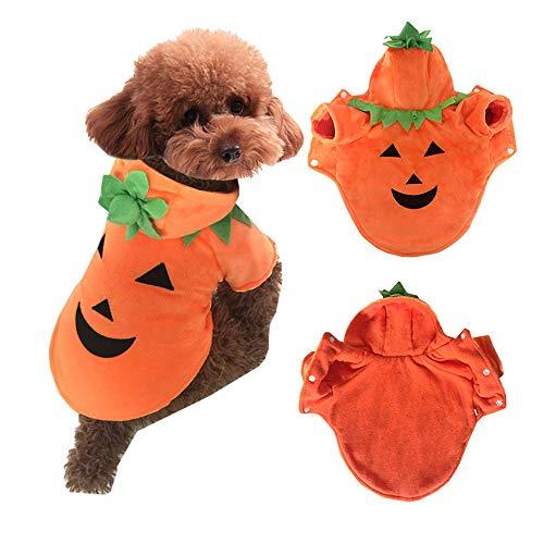 Hündchen Für Kostüm Erwachsene - WANLN Haustier Hündchen Weihnachten Halloween Kleidung Outwear Mantel Bekleidung Kürbis Hoodie Fancy Dog Dress Up Bekleidung Sweatshirt,Orange,XXS