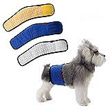Stecker Hund Männliche Hundewindel Urin Inkontinenz Wasserdicht Bauchband Pad Waschbar Windel von Mkono