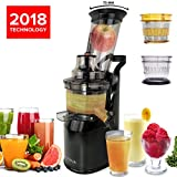 Best Cold Pressed Juicers - Quiet, Slow Speed Masticating Juicer - Creates Continuous Review