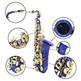 ammoon Lade Engraved Brass Eb BB Saxophone Sax of Shell Buttons with Wind Cases Instrument Cleaning Cloth Gloves Fat Belt Brush