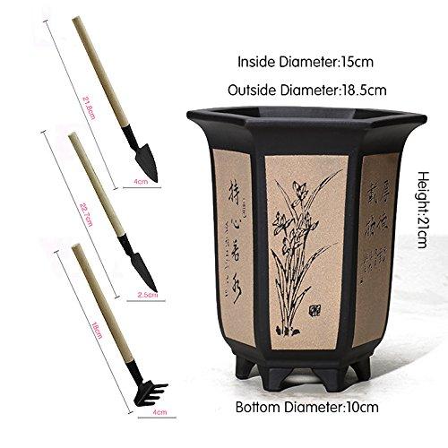 flower pot Nclon Revêtement céramique Boutique Pot de fleur,Plusieurs styles Pour Les orchidées Chlorophytum Plante verte Bonsaï Avec Jardinage Outils Ensemble-D