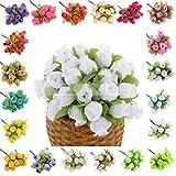 Generic Lilacs