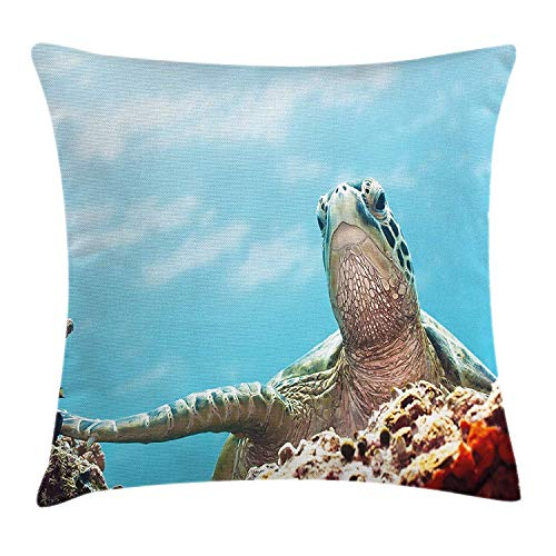 Turtle Throw Pillow Cushion Cover, Caribbean Underwater Scene Celebes Sea Close up Photography Bottom of The Ocean, Decorative Square Accent Pillow Case, 18 X 18 inches, Multicolor