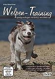 Welpen-Training - Sportgrundlagen mit Spass vermitteln [2 DVDs]