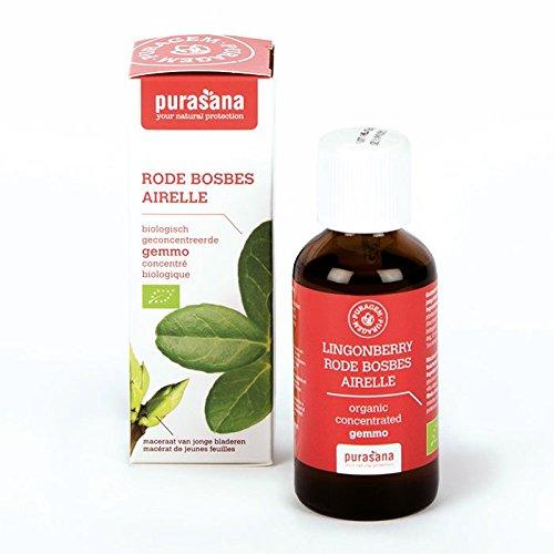 Heidelbeeren BIO–gemmothérapie purasana