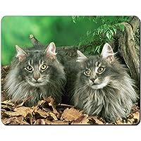 Blu gatti norvegesi delle foreste Tappetino mouse del computer pad regalo di nat
