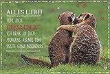 Geburtstagskarte Liebe und Freundschaft: Alles Liebe