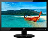 HP 18.5-inch (46.9 cm) HD LED Backlit Computer Monitor, TN Panel with VGA Port - T3U82A6 (Black)