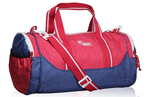 F Gear America Polyester 22 Ltrs Blue Travel Duffle (2459)
