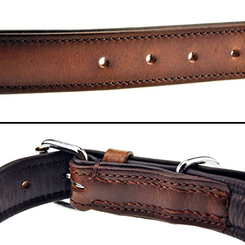 Hundehalsband aus Leder (XL – 46-55cm, Braun) - 3