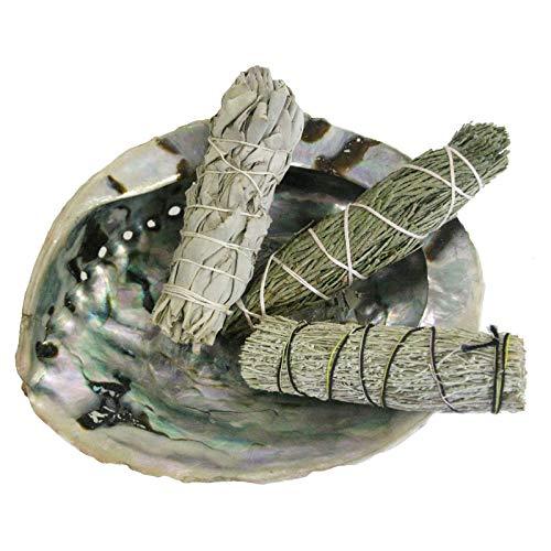 Salbei Zubehör (6-tlg Räucherset   Abalone Räuchermuschel 13-16cm + 3 x Kräuter Bündel (Smudge Bundle) Salbei White Sage + Zeder + Beifuß + Booklet + Zubehör   81094)