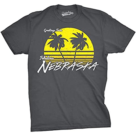 Crazy Dog TShirts - Mens Greetings From Nebraska Funny Sarcastic Beach State Tee (Dark Grey) -3XL - Homme