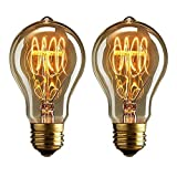 Dos bombillas vintage Edison de 40 vatios de...