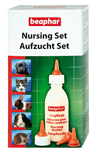 katzeninfo24.de beaphar Aufzucht Set für Katzenbabys | Zum Aufziehen von Hunden, Kleintieren etc. | Spülmaschinenfest | 1 Aufzuchtflasche, 4 Sauger, 1 Reinigungsbürste