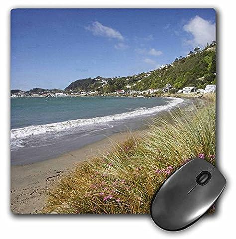 Danita Delimont - Beaches - New Zealand, Wellington Harbour, Worser Bay, Beach-AU02 DWA6127 - David Wall - MousePad